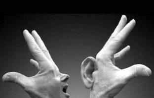 comunicação: um insight para o diálogo