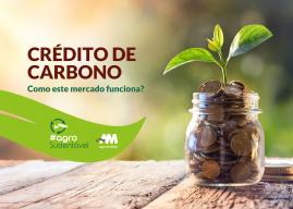 Crédito de carbono: como este mercado funciona?
